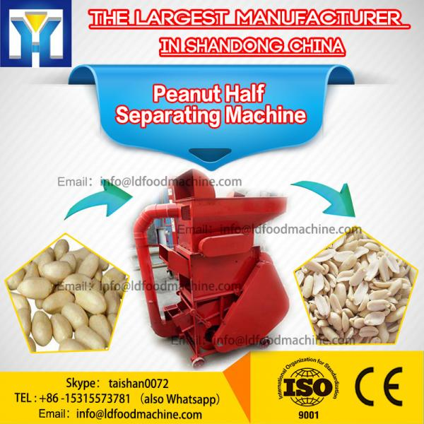 Peanuts slicer machinery , peanut peeling LDicing machinery #1 image