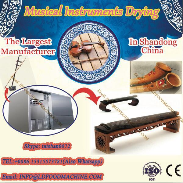 microwave continus tunnel drying equipment/machinery musical equipment dryer #1 image