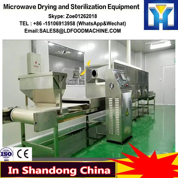 Microwave Dandelion Drying and Sterilization Equipment #1 image
