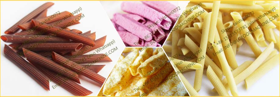 Hot sale new able fried 3D 2D snacks food prcessing line