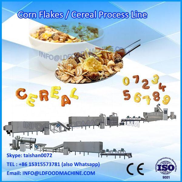 Twin screw corn flakes machinery price small Capacity corn flakes machinery #1 image